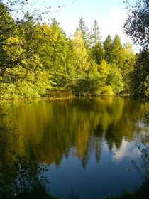 Stiller Waldsee by atelier-kristen