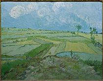 Van Gogh / Wheatfields in Auvers / 1890 by AKG  Images