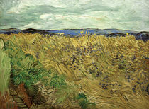 V. v. Gogh, Field w. Cornflowers / Ptg./1890 by AKG  Images
