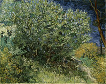 V. v. Gogh / Lilacs / Painting / 1889 by AKG  Images