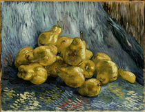 v. Gogh / Still life with quinces / 1888 by AKG  Images