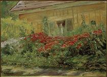 M.Liebermann, Blumenstauden am Gärtnerhäuschen nach Norden von AKG  Images