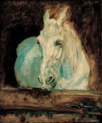 Toulouse-Lautrec, Der Schimmel Gazelle von AKG  Images