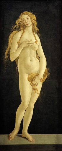 S.Botticelli (Workshop / Venus by AKG  Images