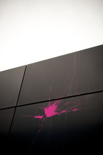 Pink Splash III von Thomas Schaefer