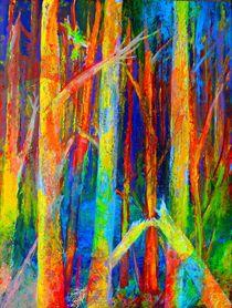 leafless indian summer von Matthias Kronz