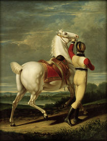 J.B.Seele, Favourite Horse of Friedrich II of Württemberg by AKG  Images