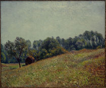A.Sisley, Kleines Tal by AKG  Images