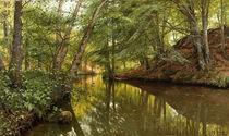 """Peder Mørk Mønsted, Spring Day at the Forest Stream"""" by AKG  Images"""
