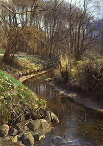 Peder Mørk Mønsted, Spring at the Forest Stream by AKG  Images