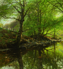 Peder Mørk Mønsted, Forest Stream in Spring by AKG  Images