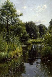 Peder Mørk Mønsted, Reeds at the Lake by AKG  Images