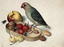 Flegel / Still life & parrot by AKG  Images