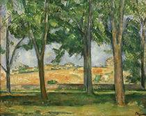 P.Cézanne, Kastanienbäume, Jas de Bouffan von AKG  Images