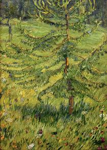 F.Marc, Junge Lärche auf einer Waldwiese von AKG  Images