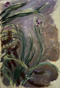 Monet / Irises / 1924/1925 by AKG  Images