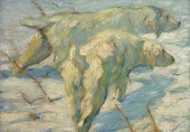 Franz Marc, Sibirische Schäferhunde von AKG  Images