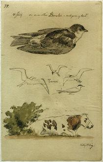J. Th. Lundbye, Schwalbe, Seeschwalben, liegende Kuh von AKG  Images