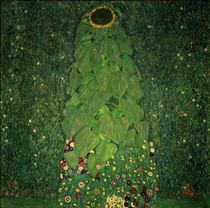 Gustav Klimt, Die Sonnenblume von AKG  Images