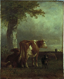 Constant Troyon / Cows in a meadow / 1851 by AKG  Images