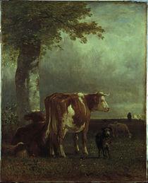 Constant Troyon / Kühe auf der Weide/1851 von AKG  Images