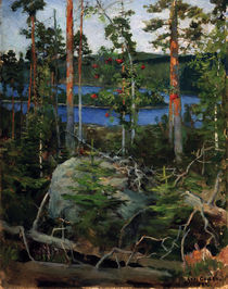 Akseli Gallen-Kallela, Landscape at Lake Jamajärvi by AKG  Images