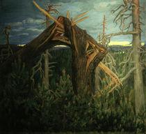 A.Gallen-Kallela, The broken pine by AKG  Images