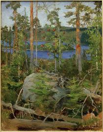 A.Gallen-Kallela, Blick auf den Jamajärvi-See by AKG  Images