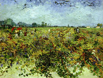 V. van Gogh, The Green Vineyard / Paint. by AKG  Images