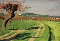 F.Vallotton, Cagne Valley by AKG  Images