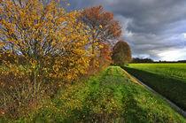 Herbst auf dem Land von Jens Uhlenbusch