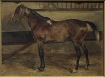Th. Géricault, Braunes Pferd im Stall von AKG  Images