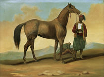 Bedouin with Arab Horse / 19th Century by AKG  Images