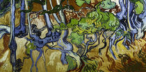 V. v. Gogh / Tree roots and tree trunks by AKG  Images