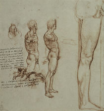 Leonardo / Motion studies et al / fol. 82r by AKG  Images