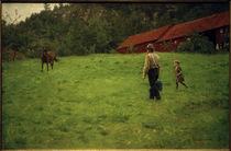 E.Werenskiold, Das Pferd tränken by AKG  Images