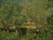A.Sisley, Weiden am Ufer der Orvanne von AKG  Images