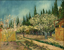 V. van Gogh, Blooming orchard by AKG  Images