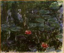 Monet / Waterlilies / Reflection by AKG  Images