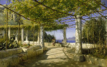 Peder Mørk Mønsted, Pergola on Capri with View of Mount Vesuvius by AKG  Images