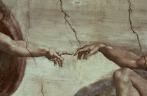 The Creation of Adam / Michelangelo by AKG  Images