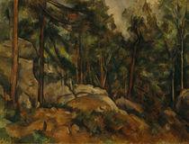 P.Cézanne, Waldinneres von AKG  Images