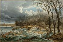 Wien, Hochwasser 1830,  Am Damm nächst dem Augarten / Aquarell von E. Gurk by AKG  Images