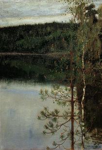 Akseli Gallen-Kallela, View of a Lake by AKG  Images