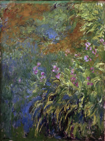 Monet / Irises along pond / Painting by AKG  Images