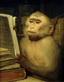 "G.v. Max, ""Reading Monkey"" / painting by AKG  Images"