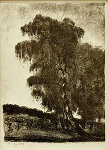 Lesser Ury, Birken by AKG  Images