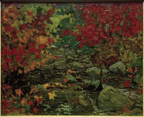 J.E.H.MacDonald, Autumn Leaves, Batchewana Wood von AKG  Images