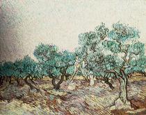 Van Gogh / The Olive Gatherers by AKG  Images