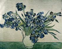 Van Gogh / Bunch of Irises / 1890 by AKG  Images